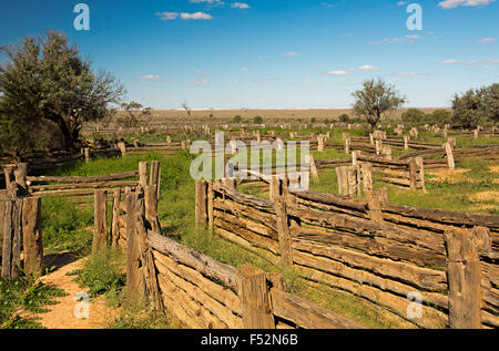 Stock yards made from cypress pine in Australian outback landscape of emerald grass after rain at old Zanci station - Stock Photo