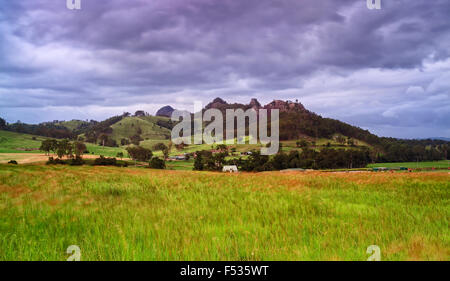 cultivated wheat field in rural agricultural region of Australia on a stormy summer day with Gloucester tops mountains - Stock Photo