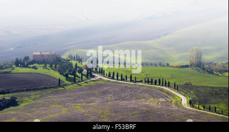 Europe, Italy, Tuscany. Winding road leading to a villa near the hilltown of Pienza. - Stock Photo