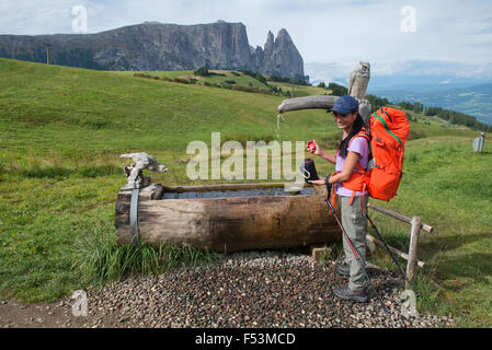 Trekking in the Alpe di Siusi in the Dolomites of Italy - Stock Photo