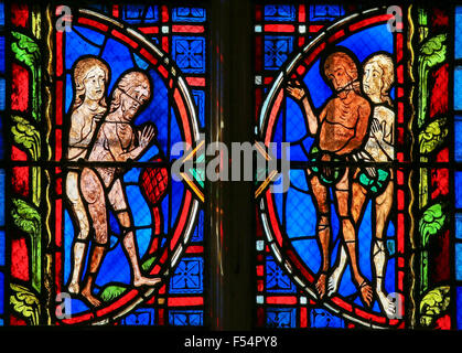 Stained glass window depicting Adam and Eve in the Cathedral of Tours, France. - Stock Photo