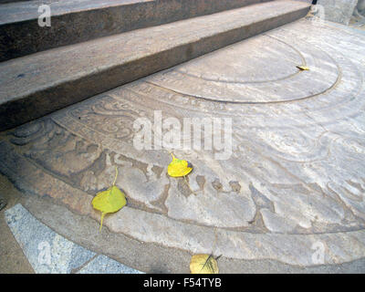 Stairs to Bodhi Tree temple, including fallen bodhi tree leaves, Anuradhapura, Sri Lanka - Stock Photo