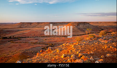 Panoramic Australian outback landscape from hilltop lookout at sunset, rocky mesas on vast barren treeless plains - Stock Photo