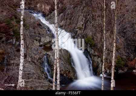 Europa, Belgien, Ostbelgien, Hohes Venn, der Wasserfall des Bayehonbaches bei Ovifat, mit 9 Meter Fallhoehe ist - Stock Photo