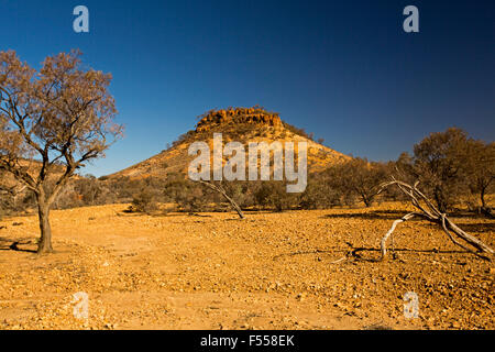 Australian outback landscape, conical flat-topped stony hill / mesa, hemmed by low trees, rising from barren red - Stock Photo