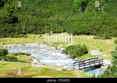 Zillertal High Alpine nature Park Hochgebirgs Naturpark near Ginzling, Tyrol, Austria - Stock Photo