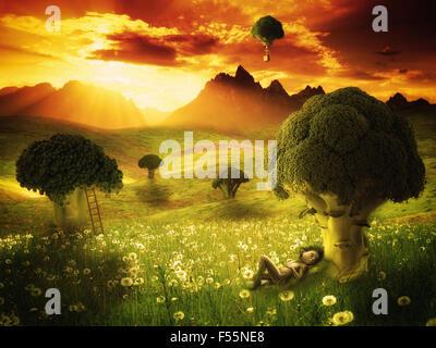 Fantasy broccoli land with elf sleeping - Stock Photo