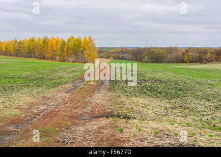 earth road fields countryside - photo #13