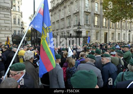 London, UK. 28th Oct, 2015. Royal Marine Protest, London, UK. A Protest by serving Royal Marines and former Marines - Stock Photo