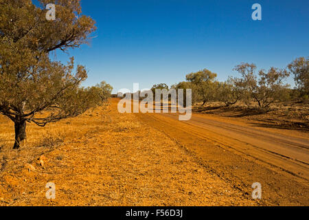 Long red outback dirt road through mulga tree woodlands to distant horizon under blue sky, western Queensland Australia - Stock Photo