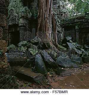 Angkor Wat temple covered by trees - Stock Photo