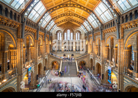 Visitors inside the Central hall of the Natural History Museum  Exhibition road South Kensington London England - Stock Photo