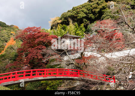 japanese garden at toowoomba in a bright summer day japan mino vermillion bridge and temple with trees behind in autumn colours - Japanese Garden Cherry Blossom Bridge
