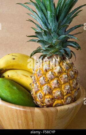 Summer concept. Set of tropical fruits, lemon, orange and ...