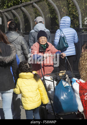 Elderly Chinese woman pushes her stuff along the sidewalk in the bustling Chinatown neighborhood of Sunset Park, - Stock Photo