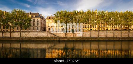 Quiet summer morning on the aspen tree-lined bank of the River Seine. Quai d'Anjou, Ile Saint Louis, Paris, France - Stock Photo