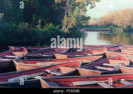 rowing boats moored on a lake - Stock Photo