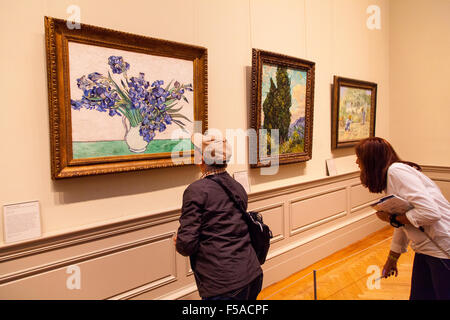 Irises by Vincent van Gogh (1890) at  The Metropolitan Museum of Art (Met)  Manhattan , New York City, United states - Stock Photo