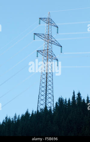Electric pylon conducting electric power from the hydroelectric plant at Hintersee, Tirol, Austria - Stock Photo