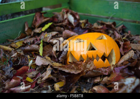 Discarded Halloween pumpkin on a compost heap. - Stock Photo