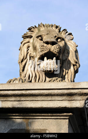 A statue of a Lion sitting on Chain bridge, Budapest, Hungary. - Stock Photo