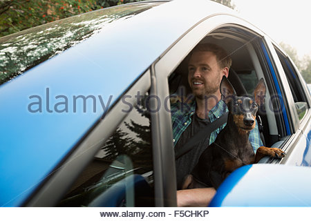 Man driving car with dog lap leaning window - Stock Photo