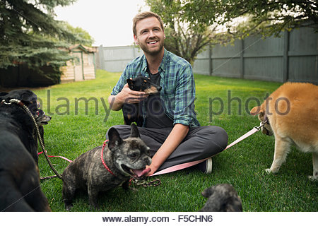 Man with dogs on leashes sitting in grass - Stock Photo