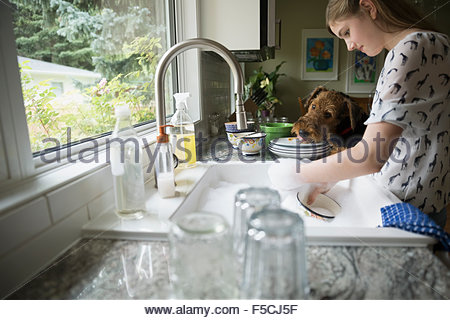 Dog licking plate next to girl doing dishes - Stock Photo