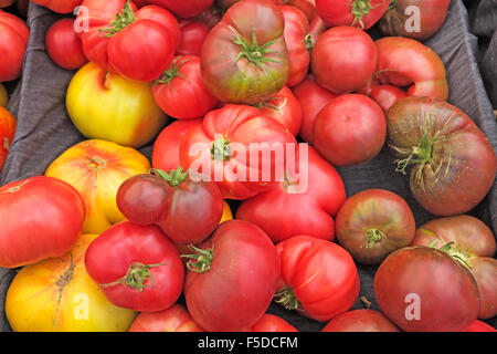 Freshly picked heirloom tomatoes on display at a summer farmer's market in Bend, Oregon - Stock Photo