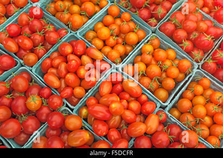 Freshly picked cartons of cherry tomatoes on display at a summer farmer's market in Bend, Oregon - Stock Photo