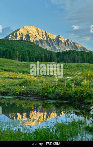 Gothic Mountain (12,631 ft.) reflected on pond, Gunnison National Forest, near Crested Butte, Colorado USA - Stock Photo