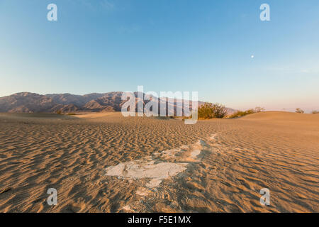 Sunrise at Mesquite Sand Dunes in Death Valley National Park, California, USA - Stock Photo