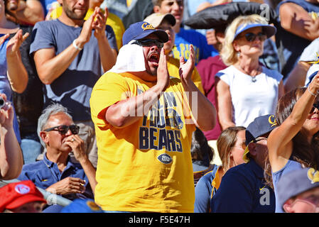 Berkley, CA. 31st Oct, 2015. A fan of the Cal Bears in action during a 27-21 loss to the USC Trojans at Kabam Field - Stock Photo