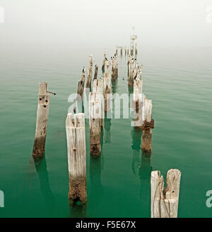 Row of old weathered wooden posts, once part of jetty, in sea of calm turquoise water & disappearing into mist obscuring - Stock Photo