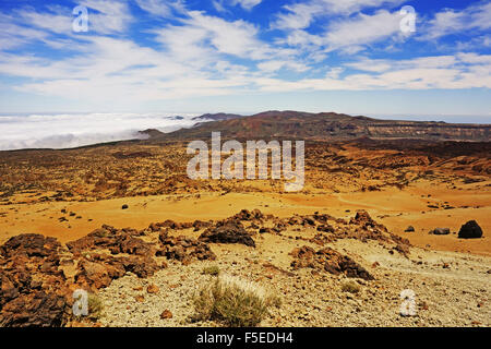 Las Canadas, Parque Nacional del Teide, Tenerife, Canary Islands, Spain, Atlantic, Europe - Stock Photo