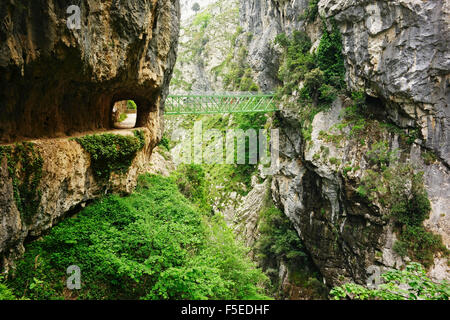 Footpath through Desfiladero del Rio Cares, Picos de Europa, Parque Nacional de los Picos de Europa, Asturias, Cantabria, - Stock Photo