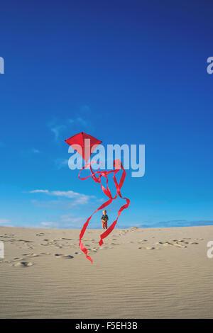 Boy flying red kite on sandy beach - Stock Photo