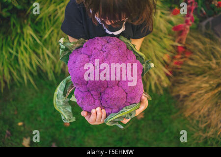 Elevated view of girl holding large purple cauliflower - Stock Photo