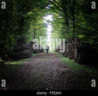 Woman walking in the forest - Stock Photo