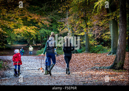 Mothers and their children walking through an autumnal woodland in Essex, England, United Kingdom. - Stock Photo