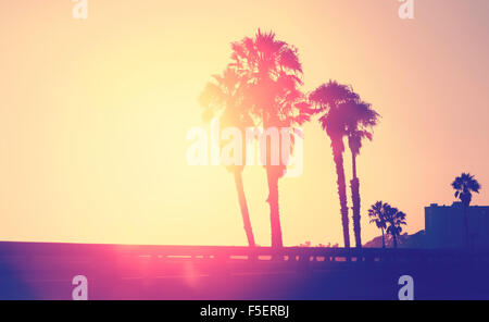 Vintage stylized picture of palms silhouettes at sunset, space for text, Santa Monica, USA. - Stock Photo