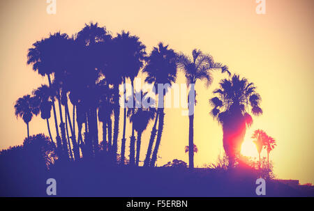 Vintage stylized picture of palms silhouettes at sunset, California, USA. - Stock Photo