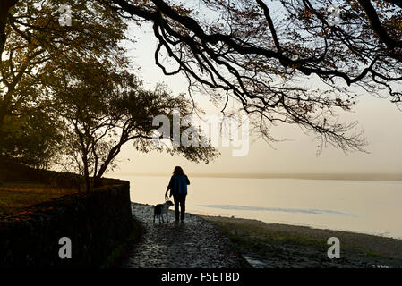 Woman with dog on footpath following the River Kent estuary, Arnside, Cumbria, England UK - Stock Photo