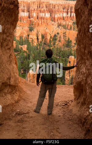 An adult male hiker admires the Peek-a-Boo Loop Trail, Bryce Canyon National Park, Utah - Stock Photo