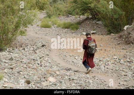 Monk trekking in the Indus Valley, Ladakh, India - Stock Photo