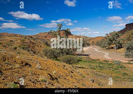 Spectacular outback landscape in Flinders Ranges, riverbed track winding through red hills under blue sky, Mount - Stock Photo