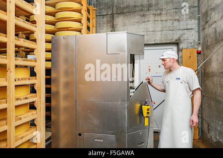 A machine brushes cheese wheels that are being matured in a cellar at a cheese factory in the village of Echarlens. - Stock Photo