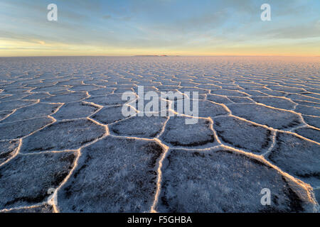 Honeycomb structure on Salar de Uyuni, salt flat, morning light, Altiplano, Lipez, Bolivia - Stock Photo