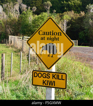 Caution road sign plus secondary advice for preventing deaths of Kiwi bird around their habitat in trounson kauri - Stock Photo