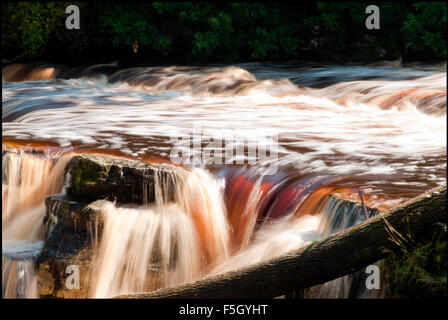 Water gushing through the River Swale in Autumn at Richmond Falls in Yorkshire. - Stock Photo
